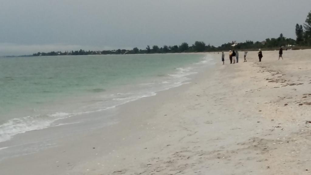 storm lashes Florida gulf coast