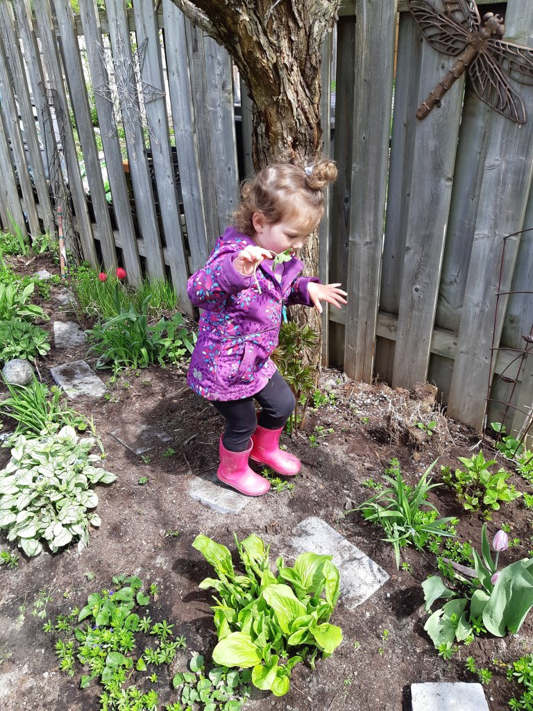 how to make your gardens kid friendly