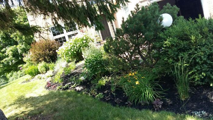 Gardens4u New Garden Designs